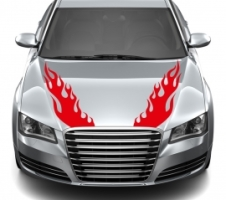Motor Flamme
